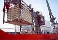 Kühlschifffahrt PalettSwinger.jpg
