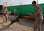 K-9 training DVIDS318117.jpg