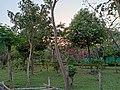 Kadri Park in Mangalore - 4.jpg