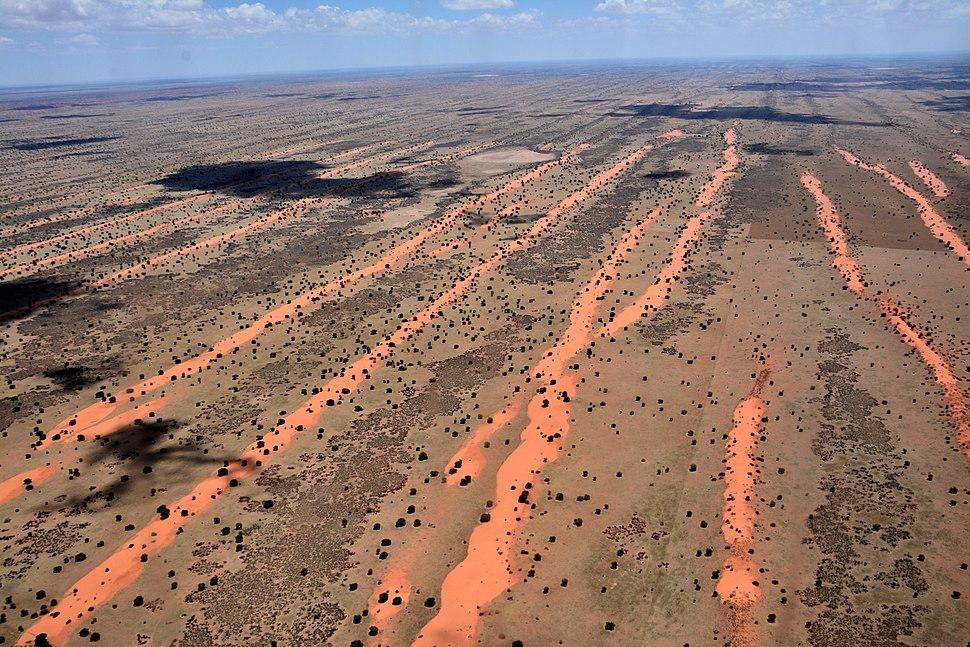 KalahariBirdView