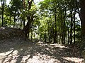 Kaneyama castle ootemon2.JPG
