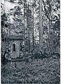 Kapelica pri Škocjanu 1911.jpg