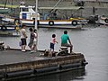 Kashira island in Bizen, Okayama,Japan 岡山県備前市日生町日生,頭島 238.JPG
