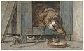 Kat bespiedt vogels bij een slapende hond.jpeg