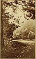 Katie of birdland - an idyl of the aviary in Golden Gate Park (1917) (14751337085).jpg