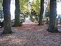Kerkhof Loenen (31131191245).jpg