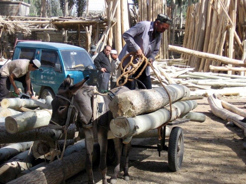 Khotan-mercado-d62