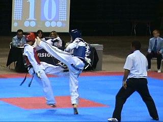 Kick Physical strike using the leg, foot or knee