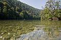 Kolpa River 1302.jpg