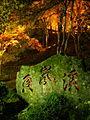Kourankei-lightup04.jpg