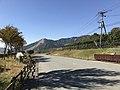 Kumamoto Prefectural Road No.298 near Aso Farm Land 1.jpg
