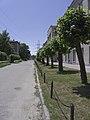 Kyivs'kyi district, Kharkiv, Kharkiv Oblast, Ukraine - panoramio - Vitalii Lytvynov.jpg