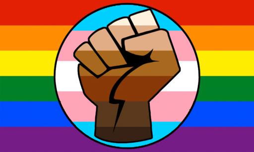 LGBT Gay Trans Pride BLM Fist Flag
