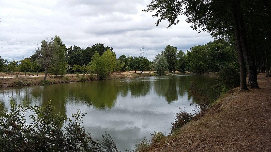 Vue du lac Mousseau à Avoine (Indre-et-Loire). Superficie: 2,2 ha.