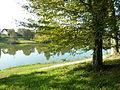 Lac de Rioz-3.jpg