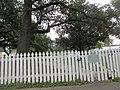 Lafayette Louisiana 4 Nov 2017 09.jpg