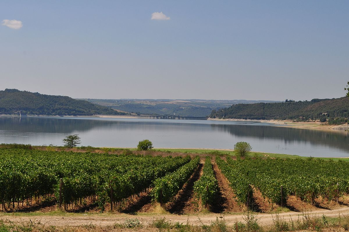 Lago di corbara wikipedia for Lago n