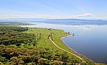 An aerial view of a large, grassy plain by the water. A small road zigzags through the field.