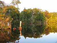 Lake Atsion.jpg