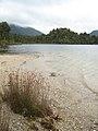 Lake Kaniere (356231260).jpg