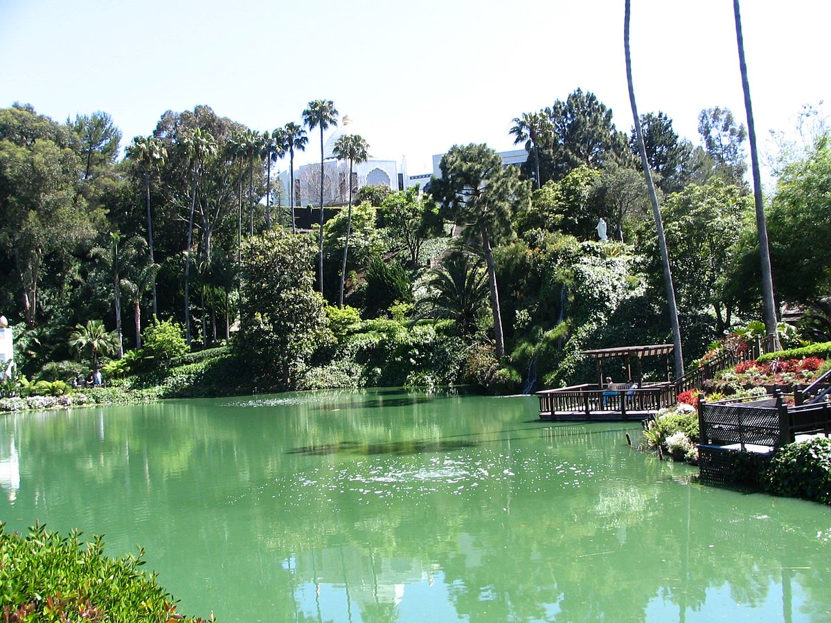 Lake Mann Apartments Orlando Fl