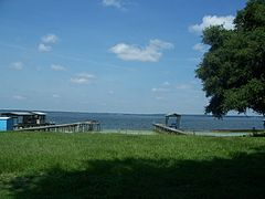 Lake Weir FL01.jpg