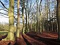 Landgoed (Estate) Einde Gooi, Hilversum, Holland - panoramio (1).jpg