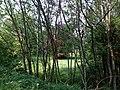 Landschaftsschutzgebiet Wäldchen bei Buer Melle Datei 21.jpg