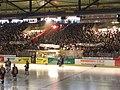 Landshut Cannibals Playoffs 2006 07.jpg