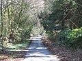 Lane near The Hermitage - geograph.org.uk - 1269436.jpg