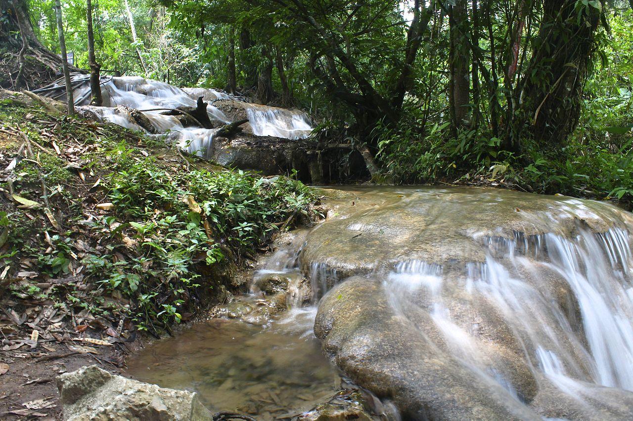 File las preciosas cascadas de agua azul chiapas 08 jpg for Cascadas de agua