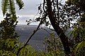 Lava Dome (24366962292).jpg