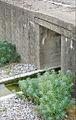 Le Jardin des Orpins et des Graminées (Estuaire, St-Nazaire) (7716925034).jpg