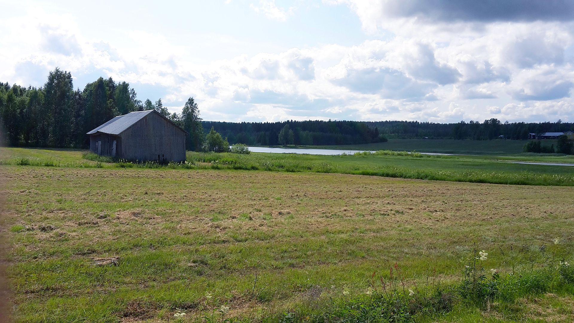 Ledusjön fotograferad från väg 353 i Ledusjö, vid sjöns nordöstra hörn.