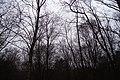 Leekfrith, UK - panoramio (42).jpg