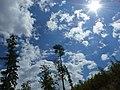 Letný deň - panoramio.jpg