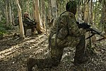 Lightning Academy transitions Joint Force from Desert to Jungle 160322-F-AD344-149.jpg