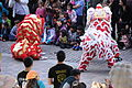 Lion Dance, Chinese New Year 2013 at the Crow Collection 16.jpg