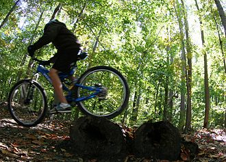 Glossary of cycling - A log pile