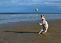Lola at the beach.JPG