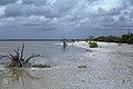 Long Cay at camp from leeward side. Inagua (27093928639).jpg