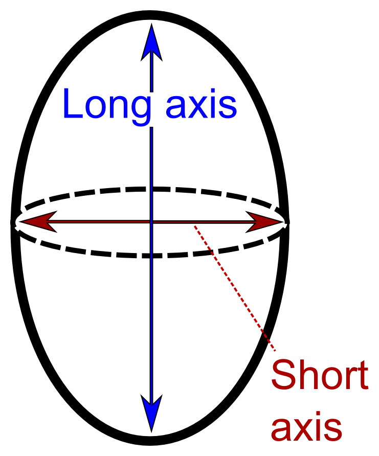 Long and short axis