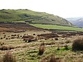 Looking back to Fridd Rhosfarch from the lower slopes of Tarrenhendre - geograph.org.uk - 594911.jpg