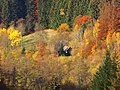 Lost In Colours - panoramio.jpg