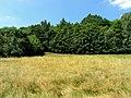 Loučenská hornatina nature park.jpg