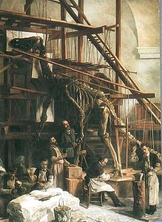 Museum of Natural Sciences - Louis Dollo supervising the mounting of an Iguanodon skeleton, between 1882 and 1885.