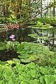 Lovaina, botánico 07.jpg