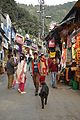 Lower Bazaar - Shimla 2014-05-08 2112.JPG