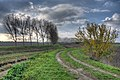 Lungo il Canale Zena - Sant'Agata Bolognese (BO) Italia - 14 Novembre 2012 - panoramio.jpg