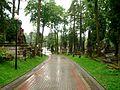 Lwów - Cmentarz Łyczakowski - 31.jpg